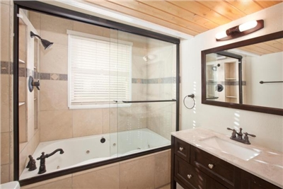 Master Bathroom - Jetted Tub/ Shower Combo