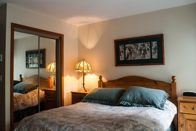 Spacious 1 bedroom with queen bed