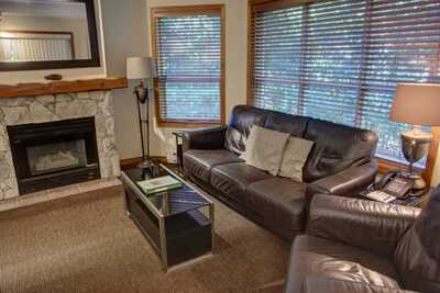 Living room - seating area with gas fireplace