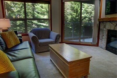 Living Room with Sofabed and Gas Fireplace