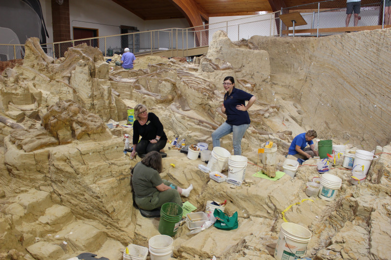 Mammoth Site Excavation- Hot Springs SD