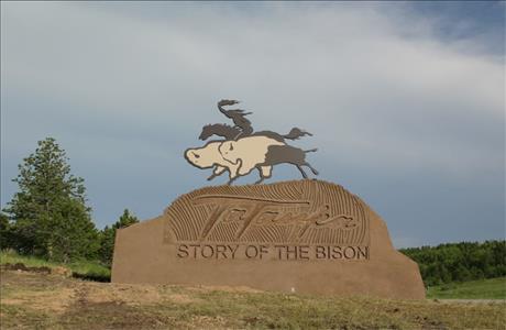 Tatanka Story of the Bison