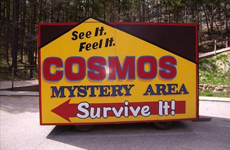 Cosmos Mystery Area - Survive It