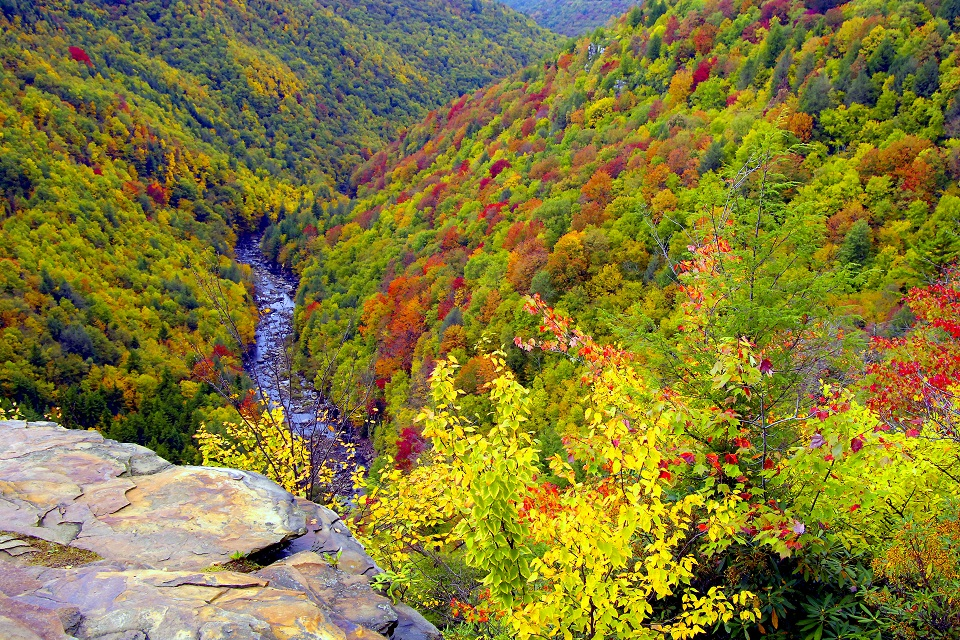 Canyon- Mid-Autumn