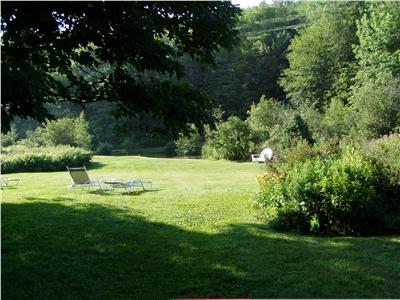 Back Yard Pond View